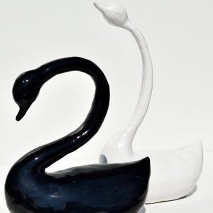 set zwart/witte eend